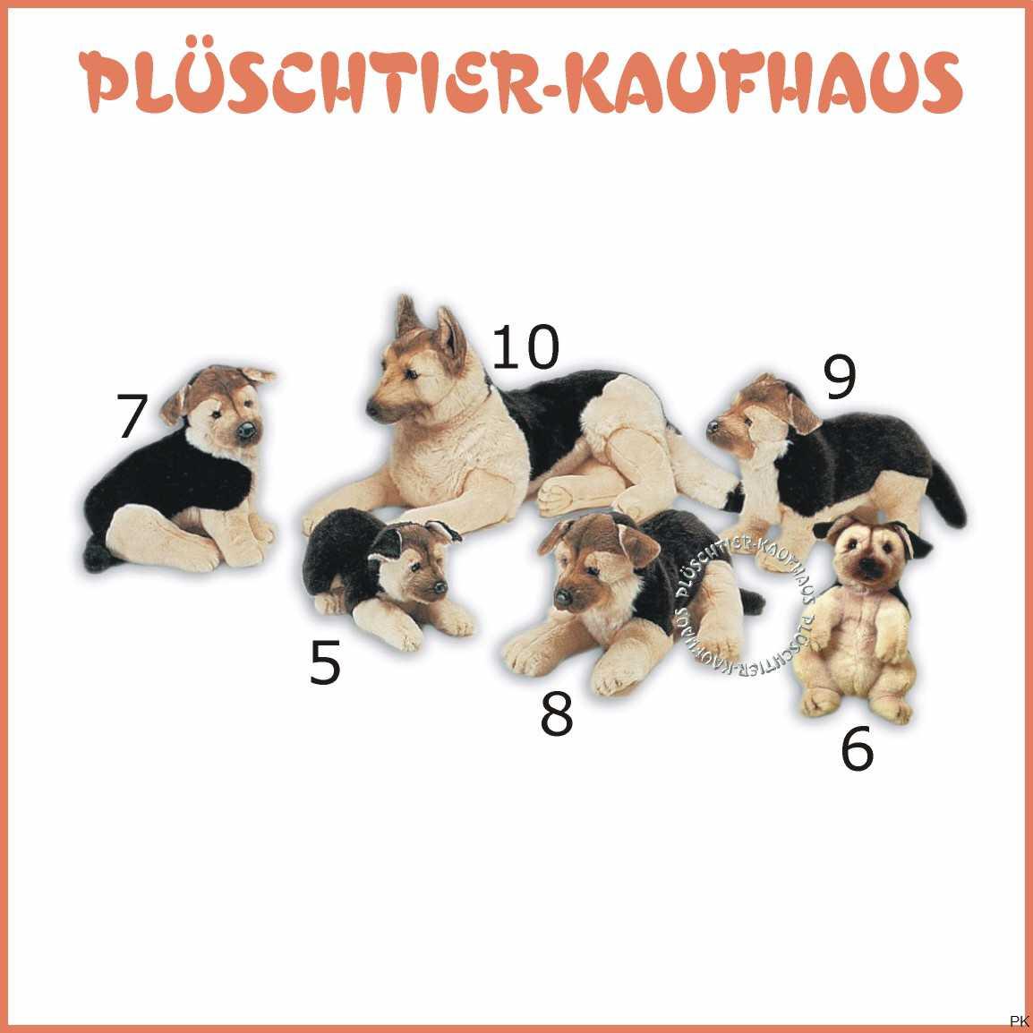 Deutscher schaferhund varianten