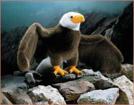 economico Peluche come rapaci falco e aquilaavvoltoio rBxCWdeo